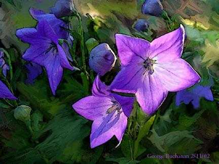 Image: A painting of purple flowers